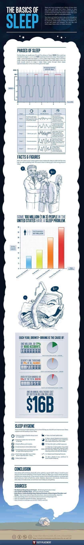 Infographic: Basics of Sleep